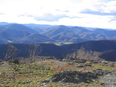 Mt Bimberi, ACT