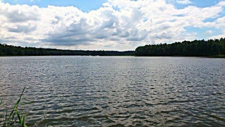 Tak było w lipcu nad Jeziorem Omulew W okolicy miejscowości Natać Mała  Autor Katarzyna Nowicka