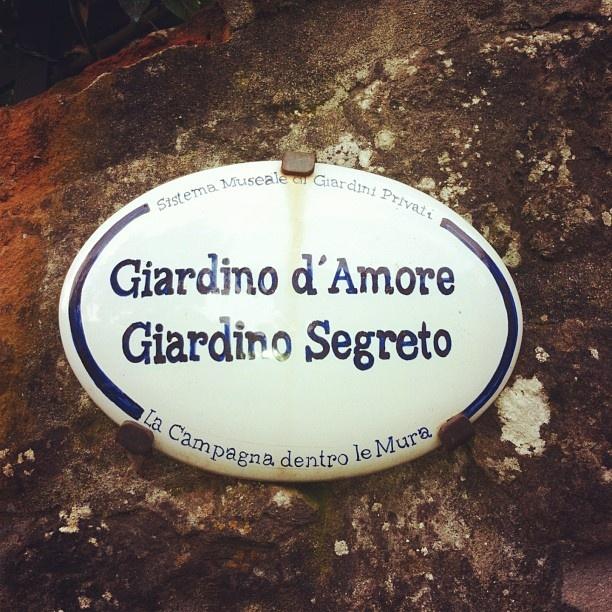 Un ringraziamento speciale a Marina per questo scatto!  #borgoagrumi  Scopri cosa racchiude il giardino di Vanna e Luciano http://www.borgodegliagrumi.it/giardino_amore_segreto_buggiano_castello.html