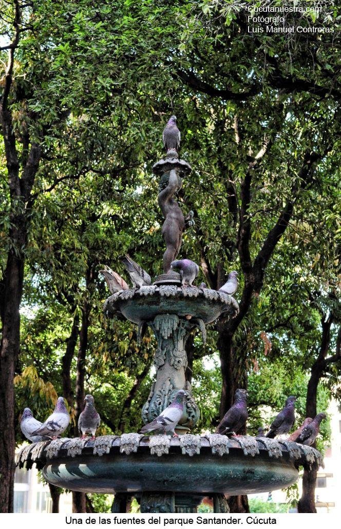 Ubicado frente a la catedral San José, en el parque principal de nuestra ciudad y se remonta su origen desde la misma fundación de la ciudad 1733
