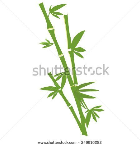 Green bamboo tree vector isolated on white, bamboo branch and leaves