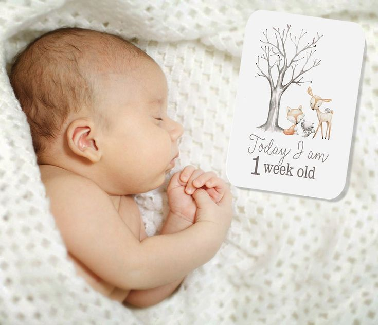 BABY MILESTONE CARDS- Woodland Friends - Baby Keepsake- Baby Photo Cards- Baby shower gift by groovygoose on Etsy