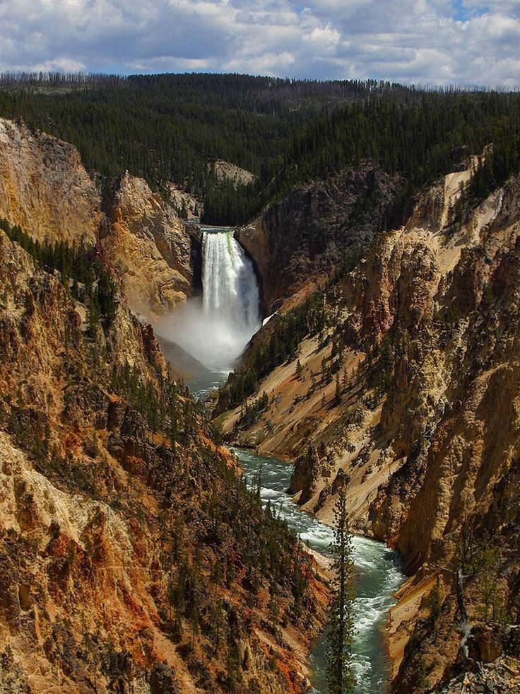 Йеллоустонский национальный парк — одна из достопримечательностей США