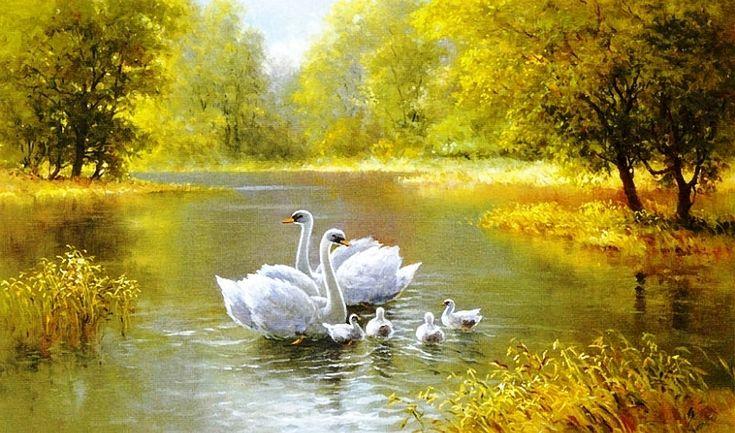 услуг пейзажи с лебедями картинки выступления заставляют