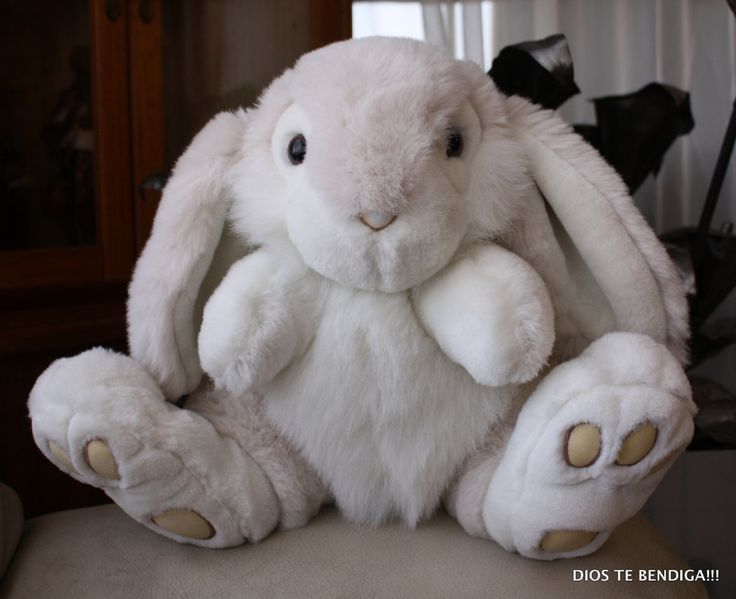 conejo-de-orejas-caidas-peluche-grande-35cm-alto-12308-MLC20058250806_032014-F.jpg (1200×977)