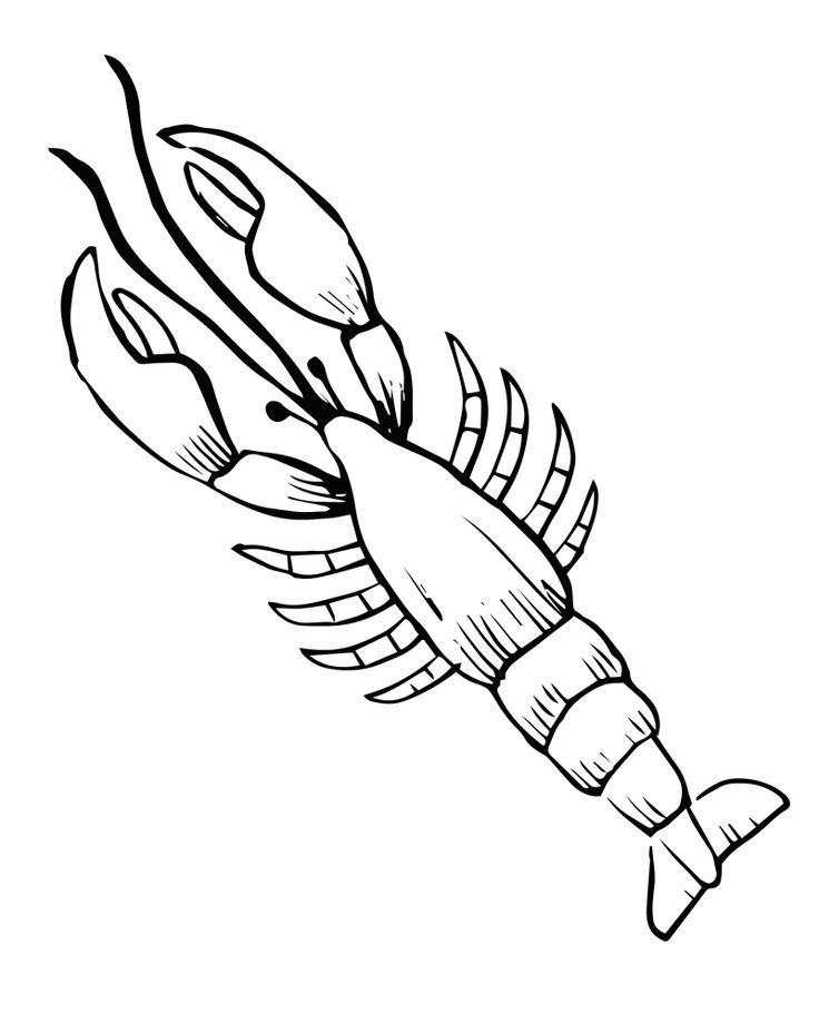 free printable lobster coloring page