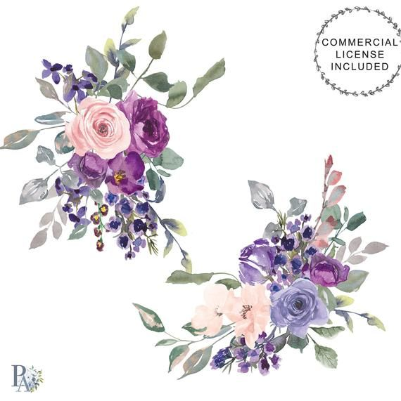 Purple Plum And Blush Watercolor Flowers Clipart Violet And Pink