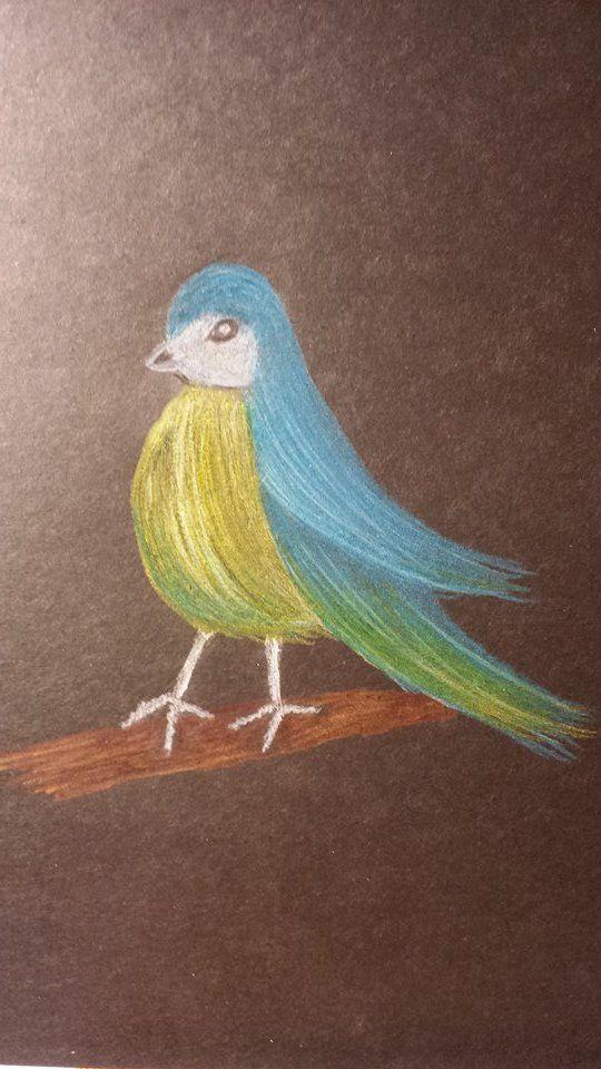Just a Bird :)