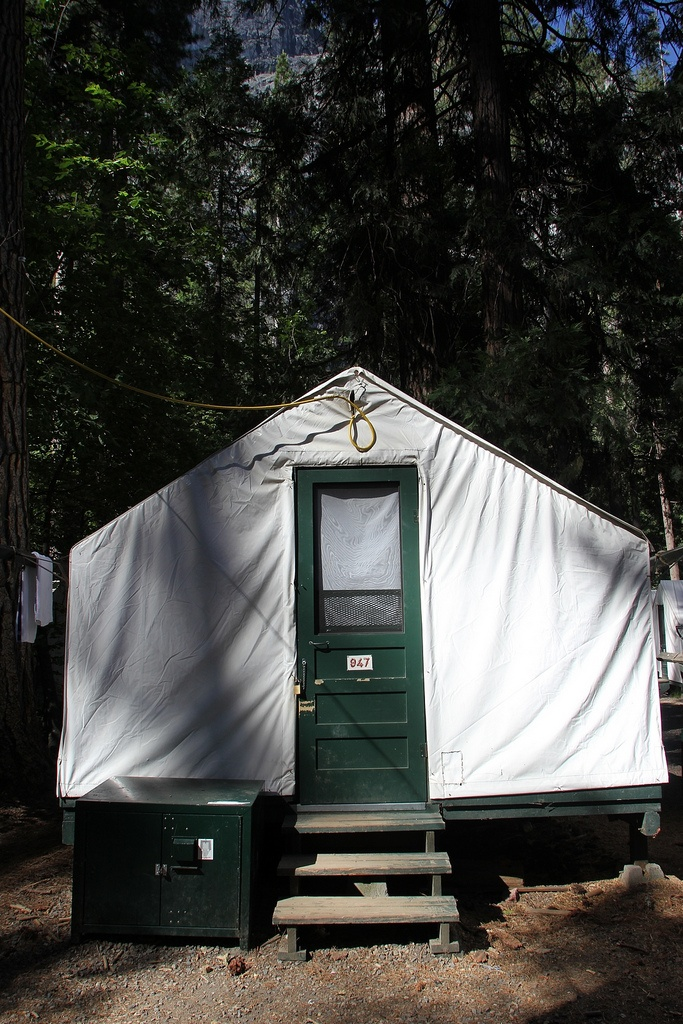250 best yosemite national park images on pinterest for Half dome tent cabins