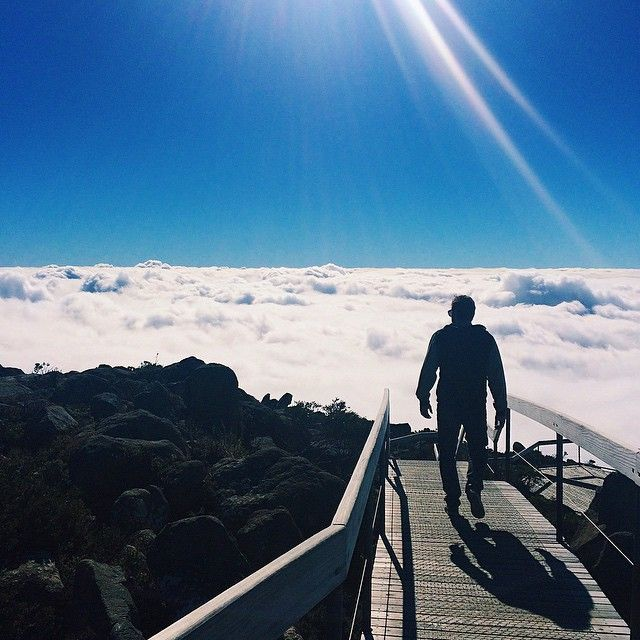Above the clouds on the summit of Mt Wellington via http://buff.ly/1KYuUPE?utm_content=buffer19b6a&utm_medium=social&utm_source=pinterest.com&utm_campaign=buffer #travel #tasmania