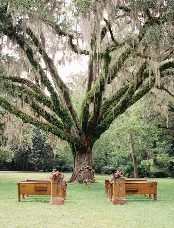 gorgeous ceremony under an old oak | Lauren Kinsey #wedding