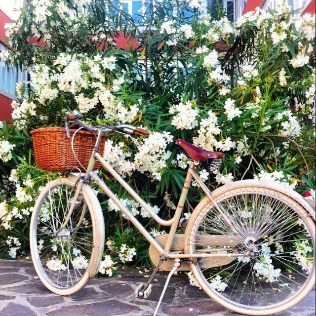 My bike  Taurus  By Luisa