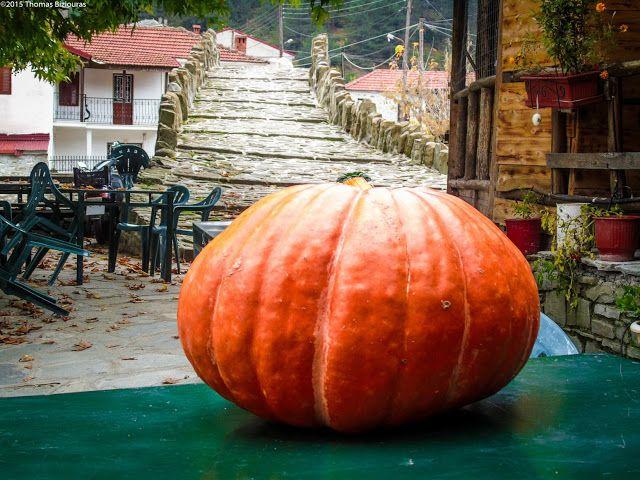 PameGrevena.gr: Καλλονή και Δοτσικό στα Φθινοπωρινά τους χρώματα!