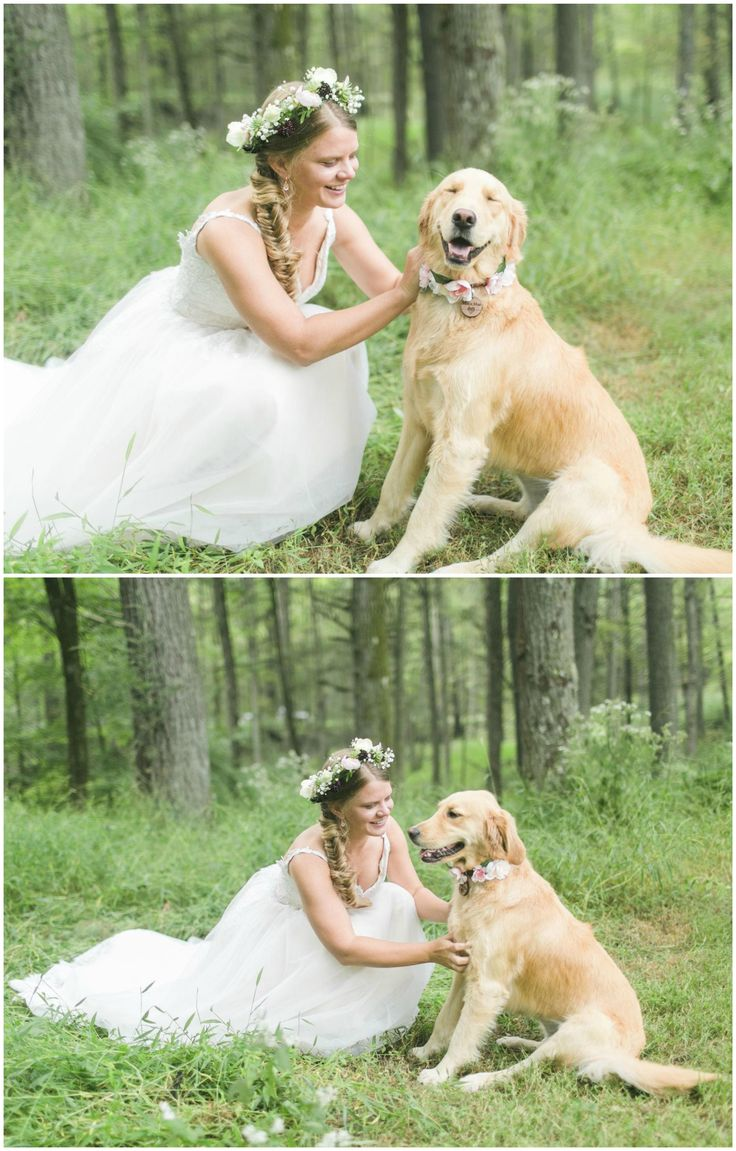 Gold retriever at the wedding, leash with pink flowers, pet photos with the bride // Sidney Leigh Photography