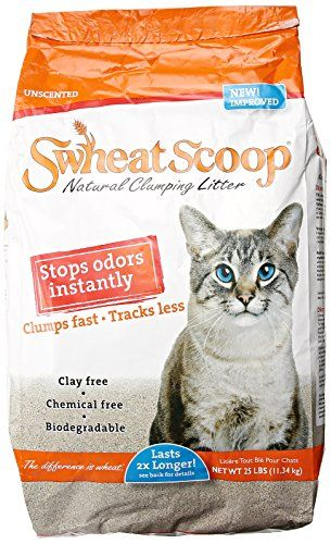 Swheat Scoop Wheat Cat Litter *** Click image to review more details.