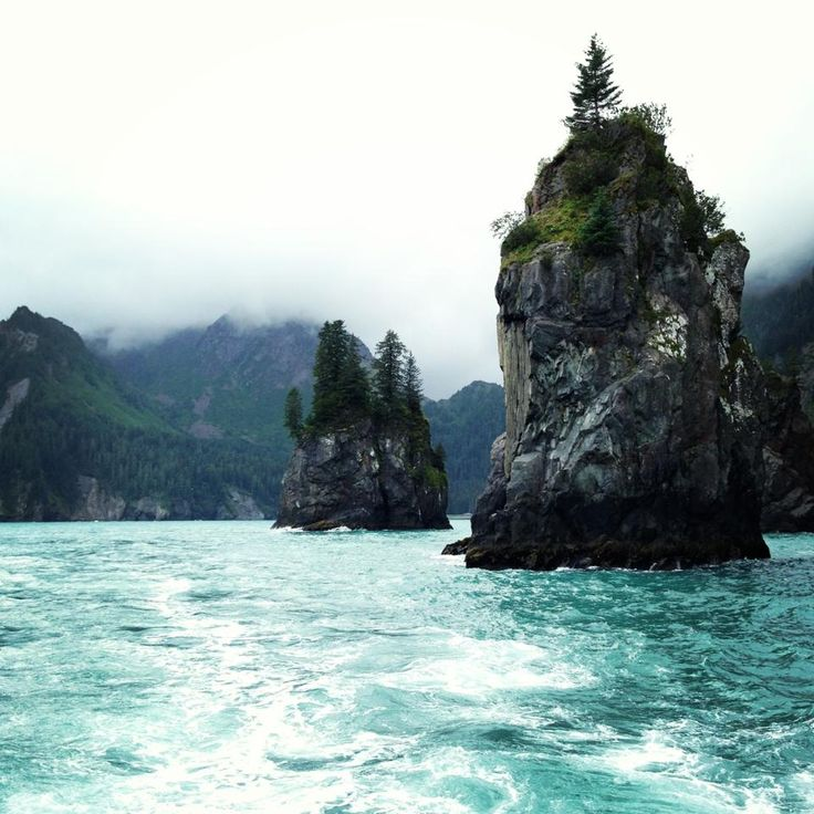 The shores of Bear Island are peppered with sea stacks. On top of these rocky outposts, Maege Mormont has stationed men to keep watch for intruders. || Resurrection Bay, Alaska