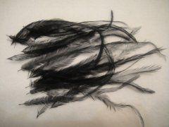 Emu - Black