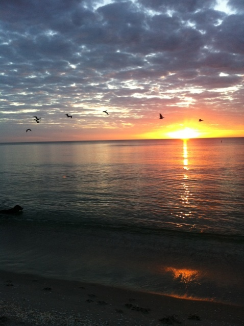 Captiva Island, FL. One of my favorite places on Earth. :)