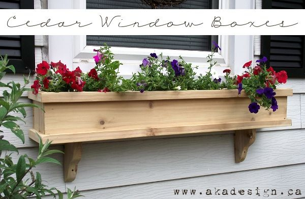 Cedar window boxes (tutorial to follow)