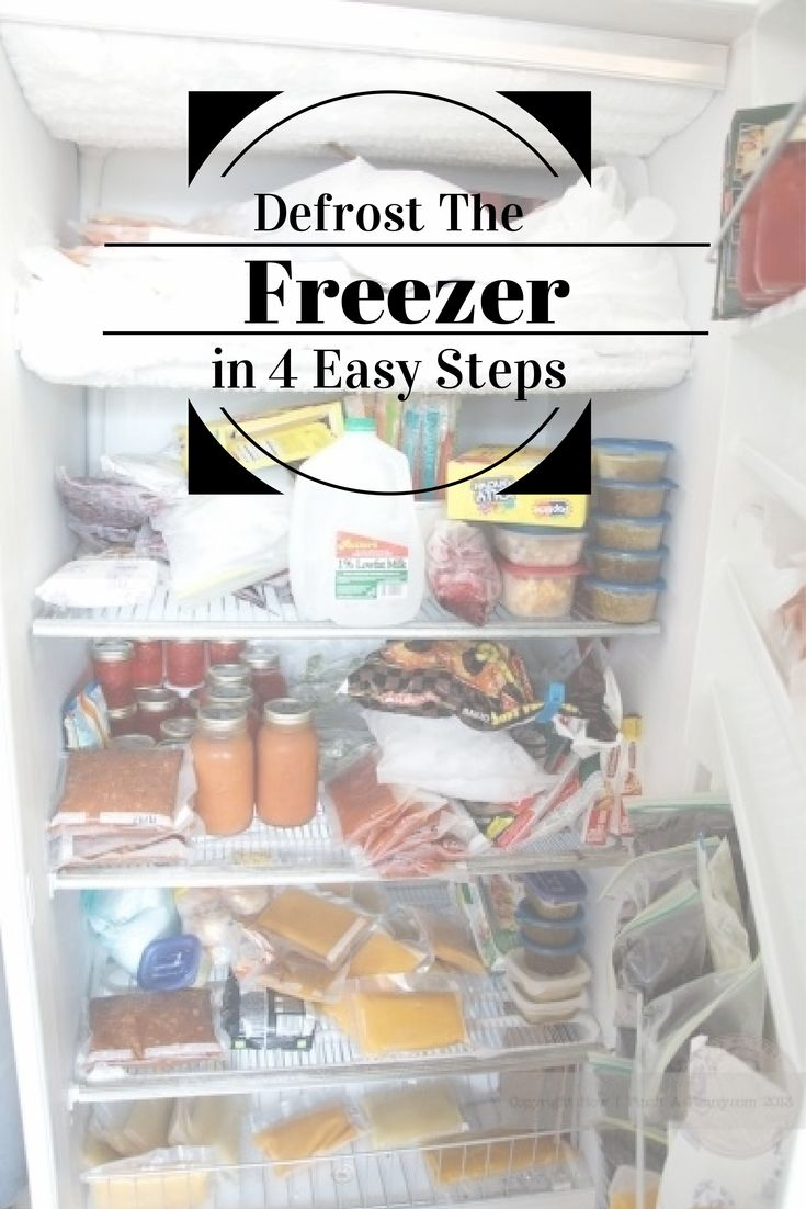 This Blogger Shares How Easy It Is To Defrost Your Freezer In 4