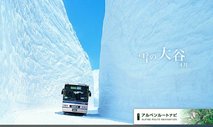 黒部アルペンルート 立山・雪の大谷ウォーク(4月~6月)