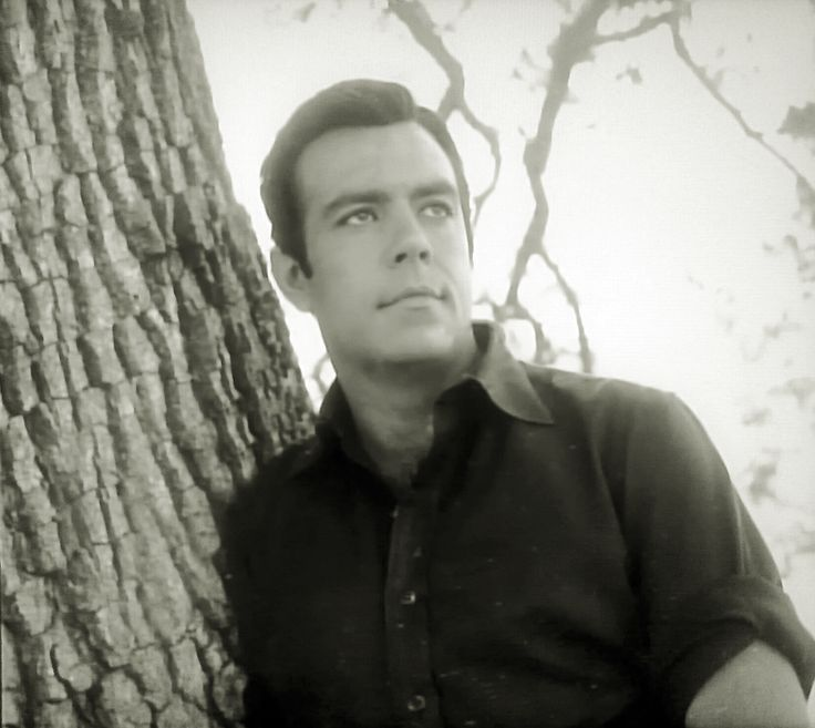 Pernell Roberts as Adam Cartwright