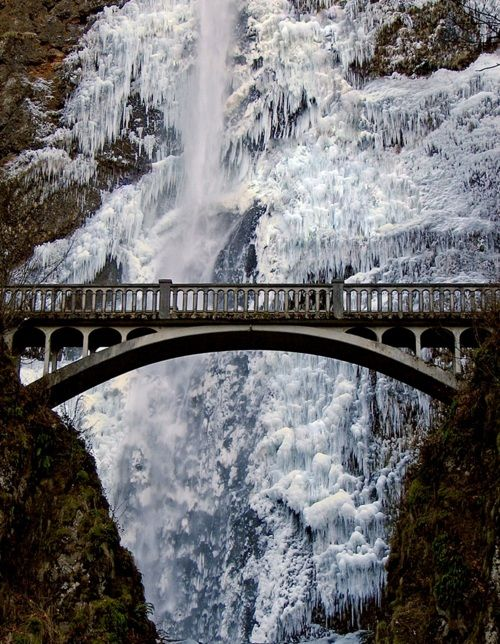 Multnomah Falls, Oregon... best time to view is in the winter when its all frozen. Best time to hike? Spring. Summer its too crowded. Spring has lots of flowers. Just pack a rain poncho.