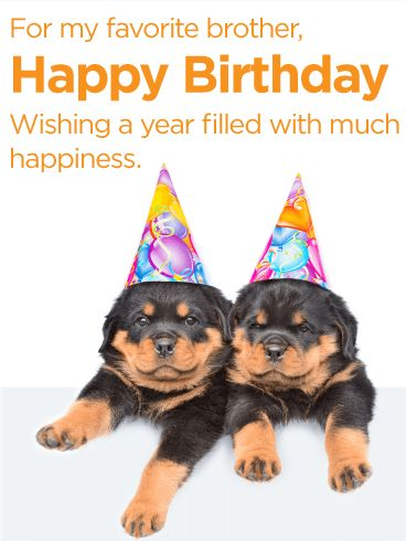 Have a Happy Year - Happy Birthday Card for Brother: Is your brother your best friend? Do you want to send him the perfect card for his birthday? Then you've found the right one! This Happy Birthday card shows two adorable puppies who are super close - just like you and your brother! Bring a smile to his face and help him have the best birthday ever by sending your birthday wishes with this card!