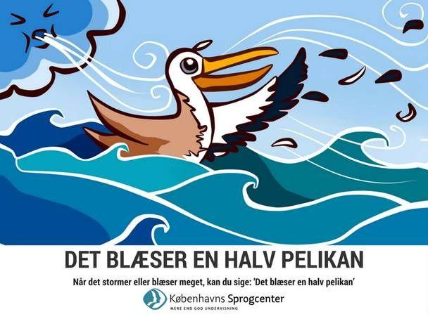 Det blæser en halv pelikan - Kbh Sprogcenter