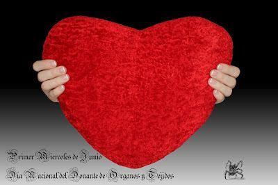 Dia Nacional del Donante de Organos y Tejidos