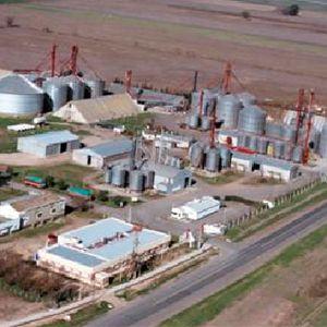 Las Cooperativas Agrícolas, también llamadas Cooperativas Agroalimentarias, tienen mucho peso en la producción agraria española, pero este peso es menor en los procesos de transformación o en los de comercialización.  Eso sí, se asocia a calidad por parte de los consumidores.