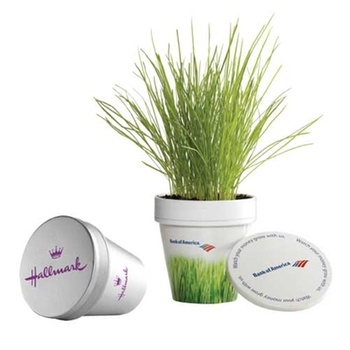 Greenify any workspace with the Office Dirt #promo plant. #epromos
