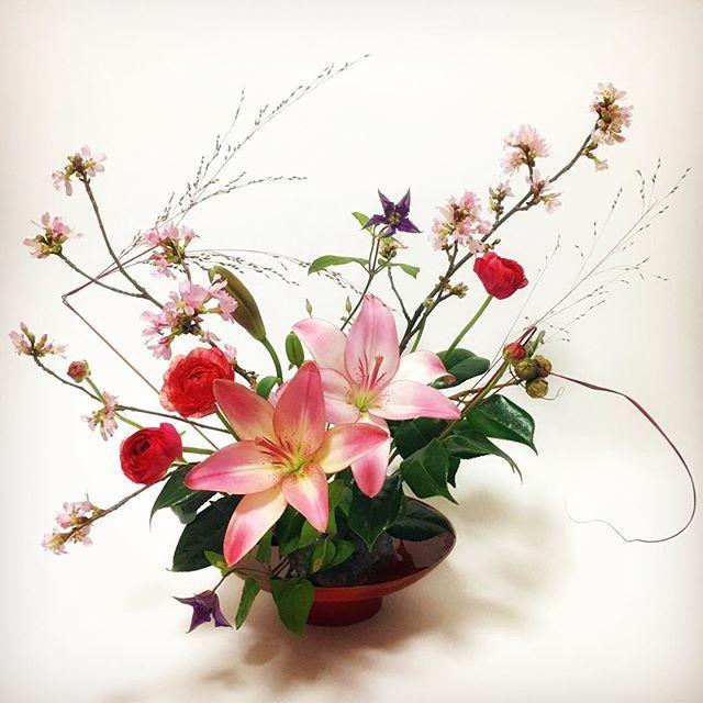 "【tamami_gyokujitsurei_kobayashi】さんのInstagramをピンしています。 《🌸 「春夏秋冬のまぜざし 〜""みにくいアヒルの子""の様な百合をヒロインに迎えて〜」 桜、テッセン、秋の枯草、椿と 四季を代表する花卉が出揃う 今の時期ならではのまぜざしー。 ヒロインに迎えたのは、 お花屋さんに並んでいたどの花よりも 地味で目立たない焦茶色の蕾だった百合。 素朴な花を咲かすのかと思いきや 姫君の様な風貌でヒロインを演じきるー。 🖋 #ikebana #sogetsu #flowers #flowerarrangement #flowerstagram #floralart #beautiful #japan #japanesetradition #japaneseculture #art #lily #cherryblossoms #clematis #camellia #ranunculus * #華道 #いけばな #生け花 #草月 #草月流 #日本文化 #花のある暮らし #フラワーアレンジメント #ユリ #桜 #クレマチス #椿…"
