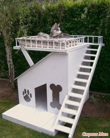 Особняк для собаки