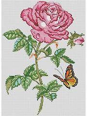 Rose Beauty Cross-Stitch Pattern - Electronic Download