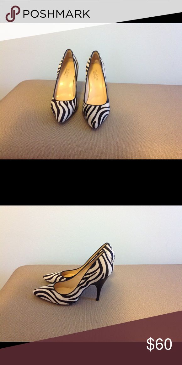 Talbots Zebra Patterned Heels Talbots Zebra Shoes size 9 1/2. Excellent condition. Originally $159.00. Talbots Shoes Heels