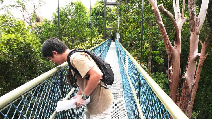 Walk on the Wild Side - YourSingapore