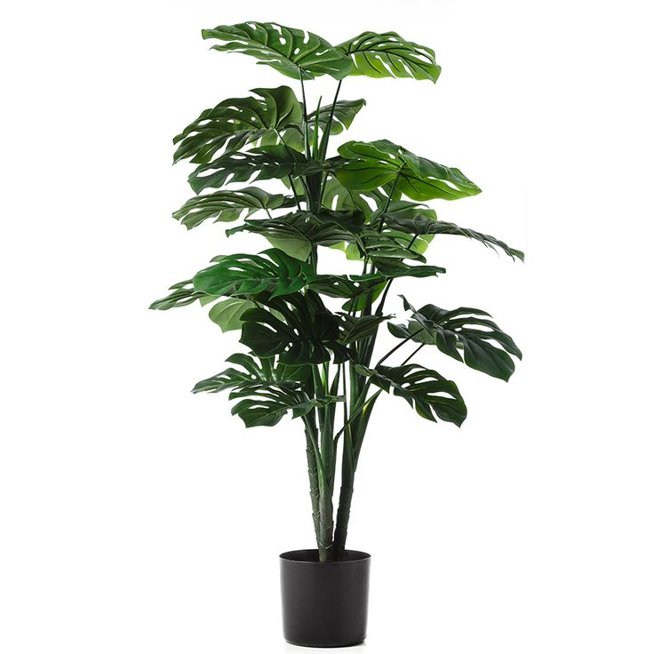 This beautiful range of potted plants will bringa touch of freshness and life to your home decor. In a range of styles and sizes, these lush green faux plants are a fantastic,easycare option.