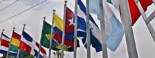 La guerra contra las drogas sólo ha creado una amenaza para la seguridad internacional: IISS