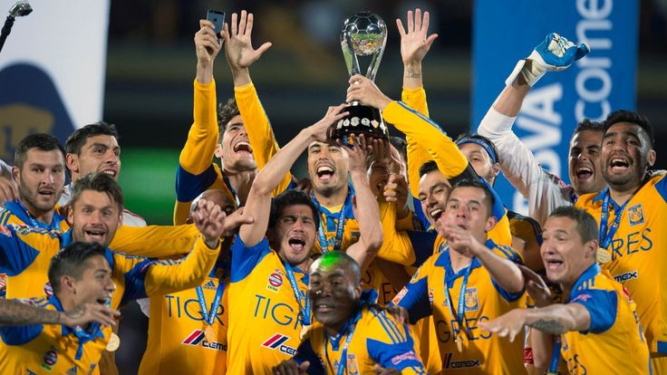 Image result for UANL Tigres futbol supporters