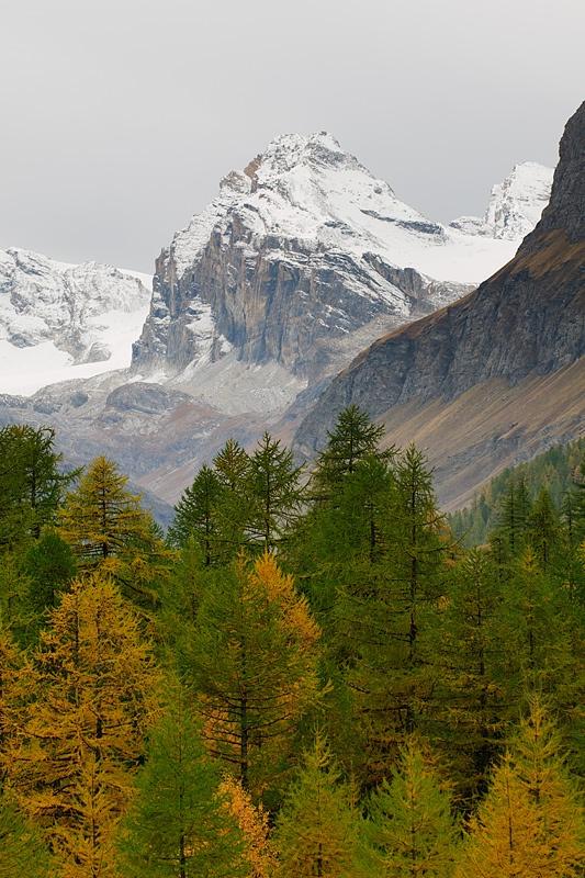 Parque Nacional del Gran Paradiso, en Italia,, Valle D'Aosta region Italy