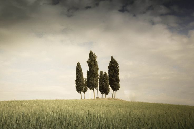 Simple Tuscany by Alice T., via 500px