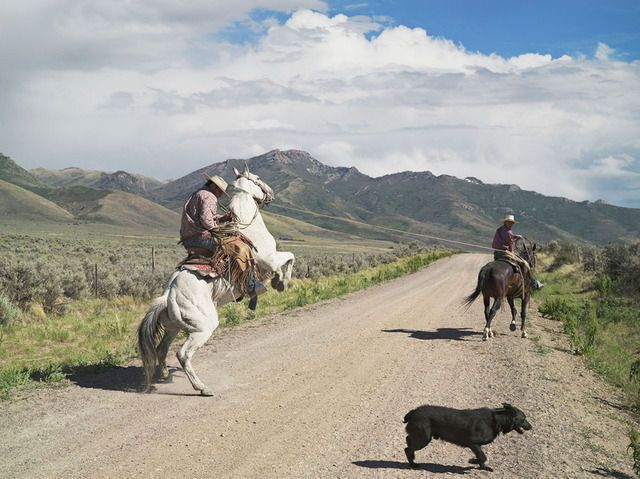 Casey and Rowdy Horse Training, 71 Ranch, Deeth, Nevada