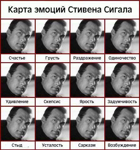 эмоции, Стивен Сигал