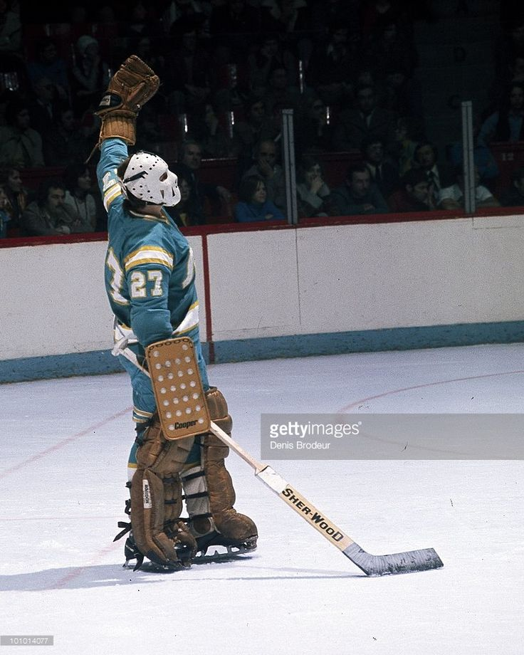 s-goaltender-gilles-meloche-of-the-california-golden-seals-protects-picture-id101014077 (819×1024)