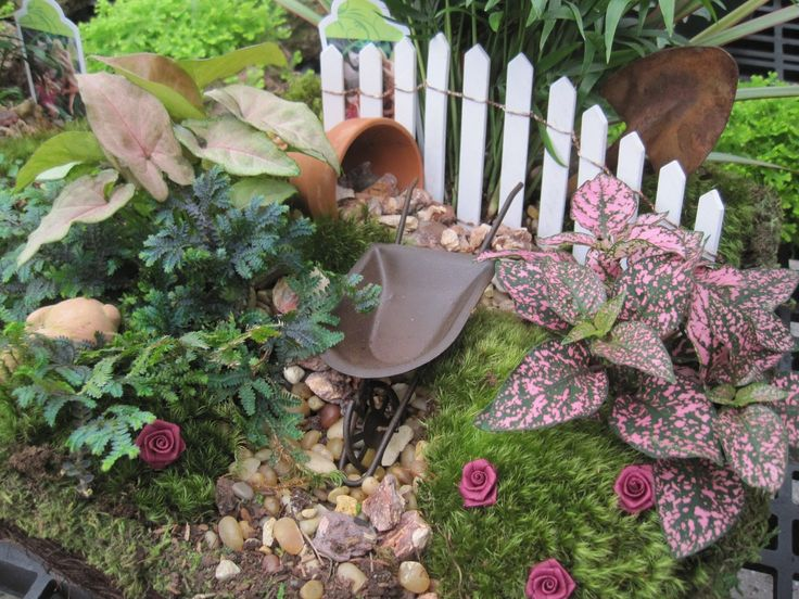 Best Plants For Fairy Gardens Really Are A Variation From Your Miniature  Gardens Which Have Been