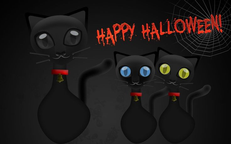 halloween cat screensaver download https://www.hdwallpaperspop.com/halloween-cat-screensaver-download/