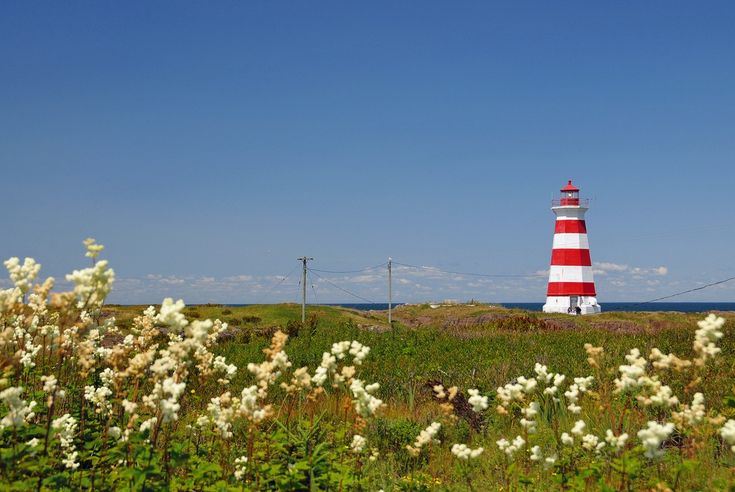 Though only seven-kilometers wide, Brier Island packs in everything that makes Nova Scotia great. Here are 8 reasons you should visit remote, beautiful Brier Island.
