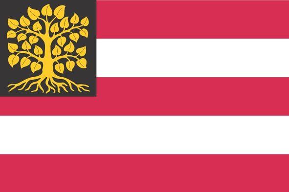 Vlag 's-Hertogenbosch
