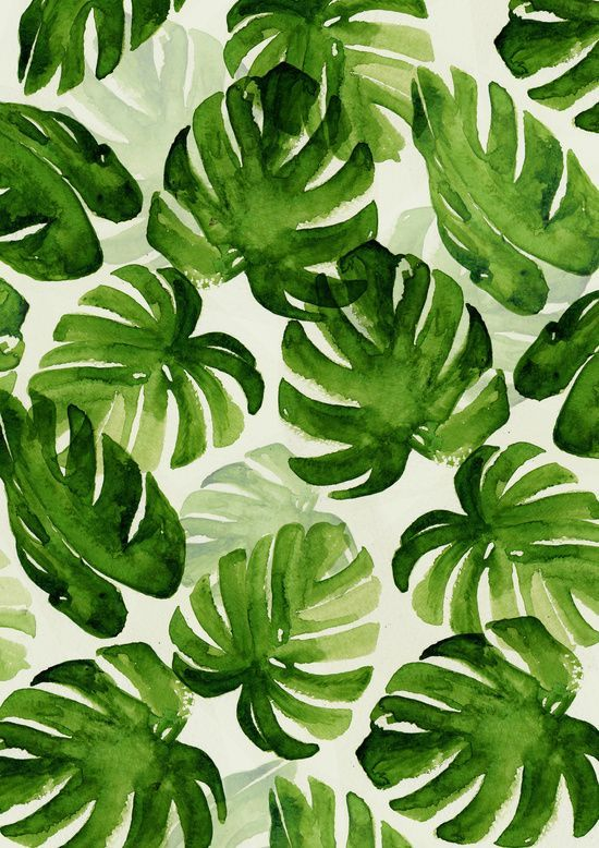 tropical Monstera pattern for summer | ban.do                                                                                                                                                                                 More